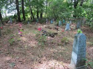 Старая часть нового кладбища в Семежево
